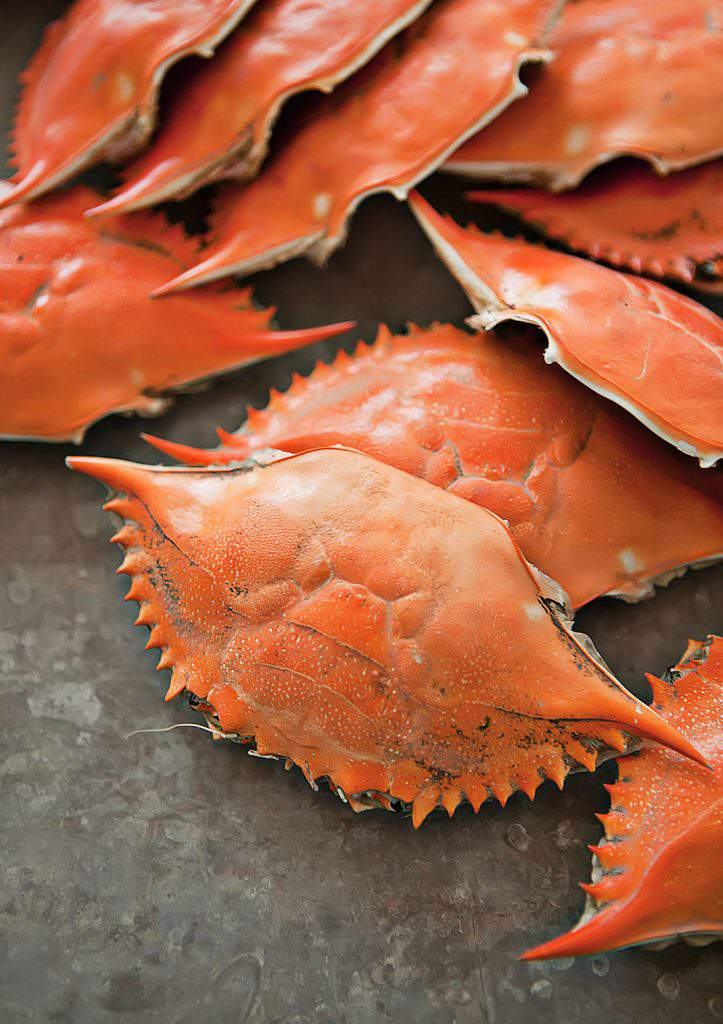 clean crab shells