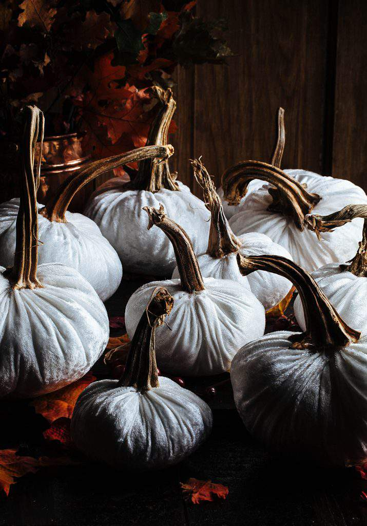 white velvet pumpkin multiples