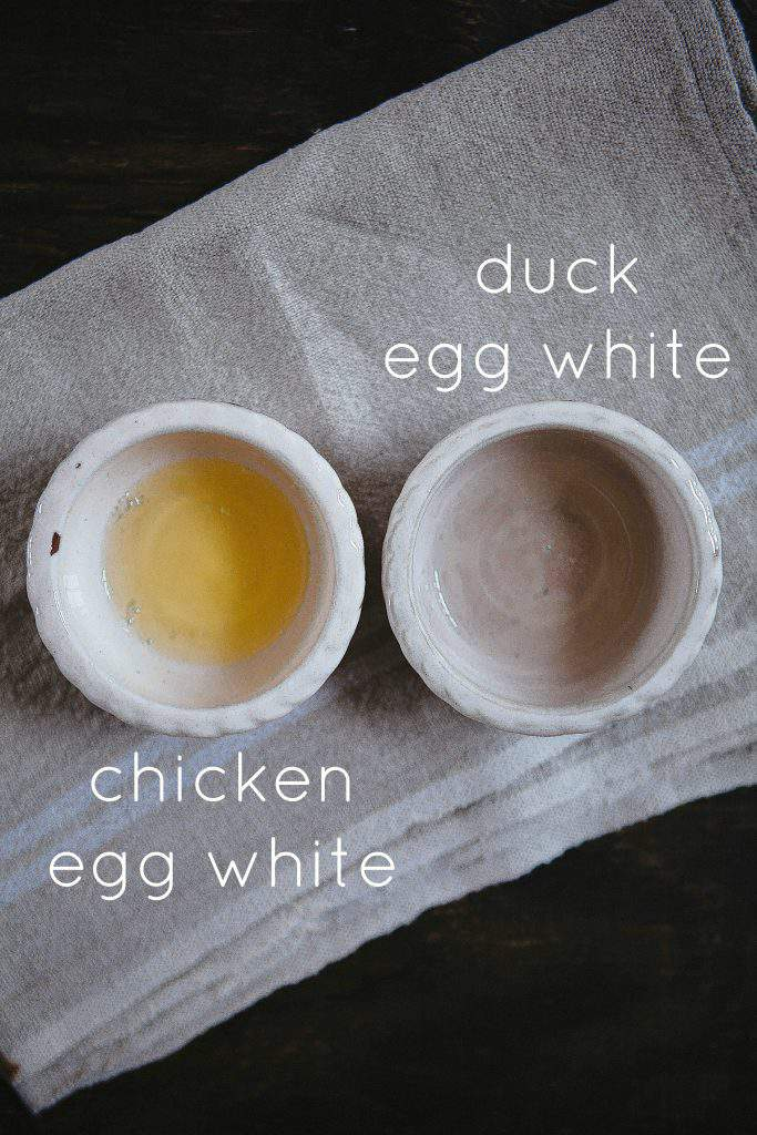 duck and chicken egg whites
