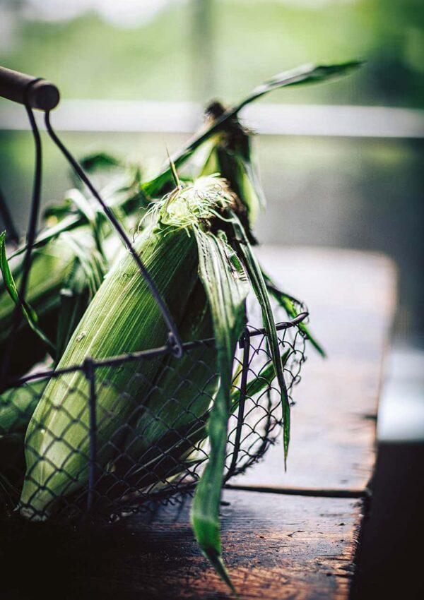 Freezing Fresh Corn